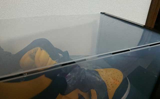 スニーカー収納ボックス6